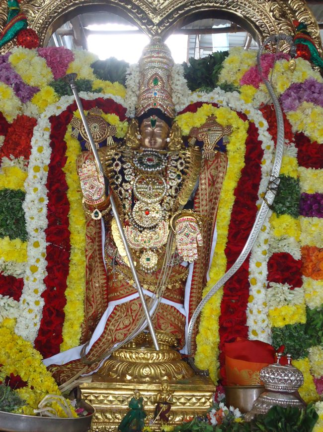 20, 21ST JAN 15 - THIRUNANGUR 11 GARUDASEVAI (215)