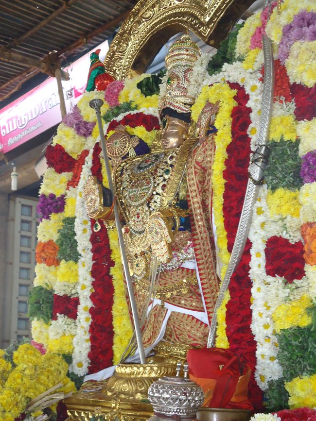 20, 21ST JAN 15 - THIRUNANGUR 11 GARUDASEVAI (224)