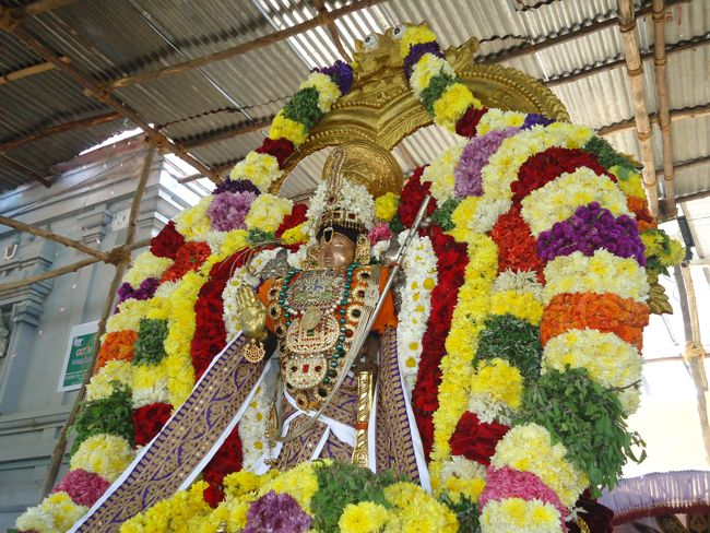 20, 21ST JAN 15 - THIRUNANGUR 11 GARUDASEVAI (227)