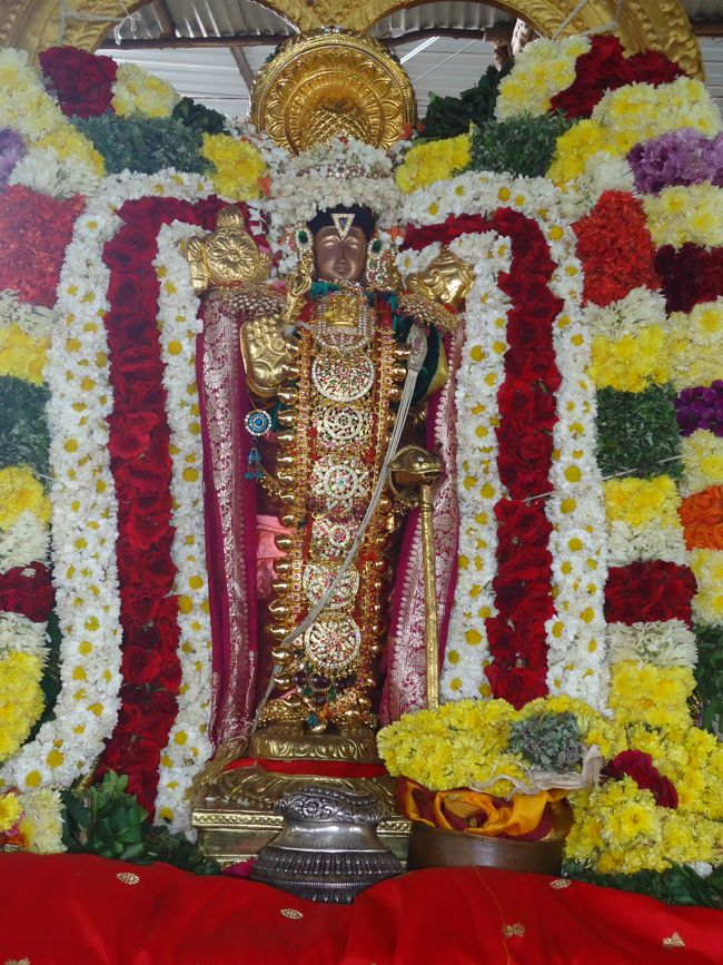 20, 21ST JAN 15 - THIRUNANGUR 11 GARUDASEVAI (234)