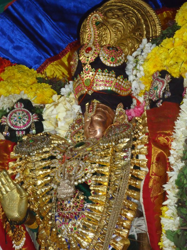 20, 21ST JAN 15 - THIRUNANGUR 11 GARUDASEVAI (243)