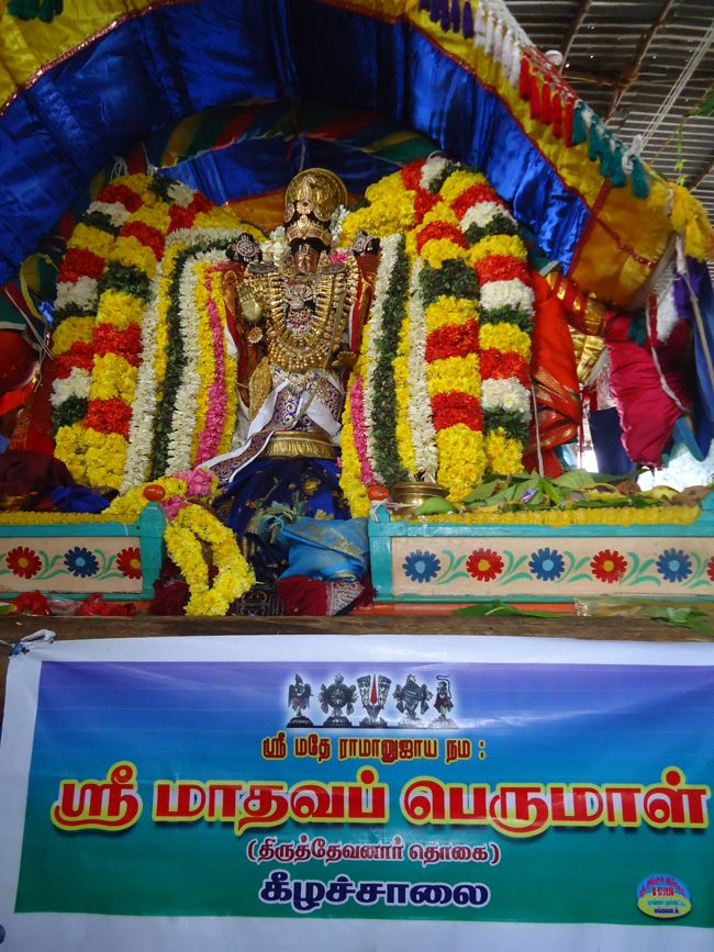 20, 21ST JAN 15 - THIRUNANGUR 11 GARUDASEVAI (246)