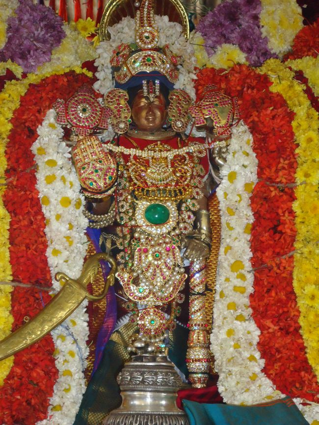 20, 21ST JAN 15 - THIRUNANGUR 11 GARUDASEVAI (250)
