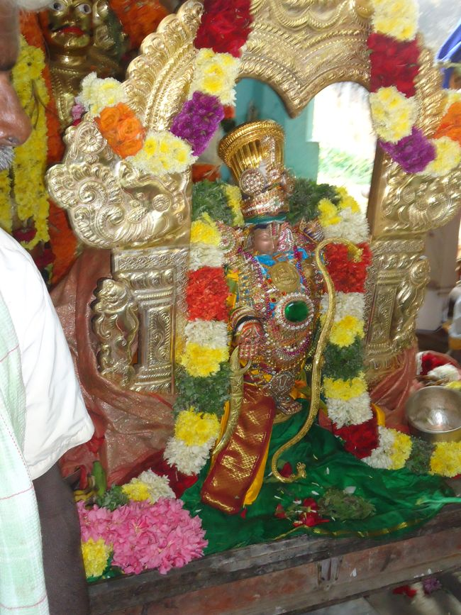 20, 21ST JAN 15 - THIRUNANGUR 11 GARUDASEVAI (367)