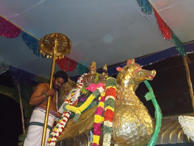 20, 21ST JAN 15 - THIRUNANGUR 11 GARUDASEVAI (416)