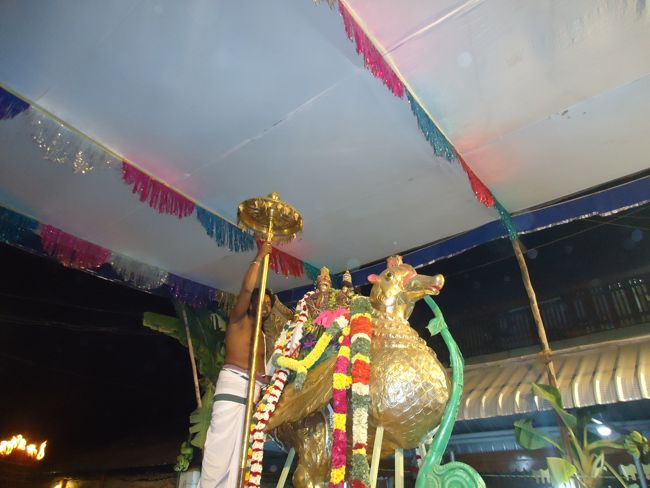 20, 21ST JAN 15 - THIRUNANGUR 11 GARUDASEVAI (420)