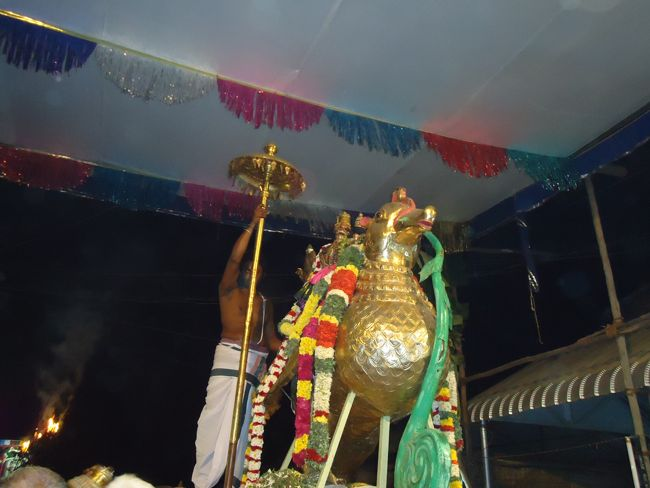 20, 21ST JAN 15 - THIRUNANGUR 11 GARUDASEVAI (422)