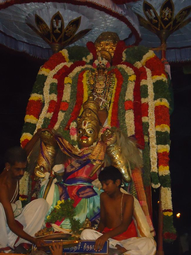 20, 21ST JAN 15 - THIRUNANGUR 11 GARUDASEVAI (435)