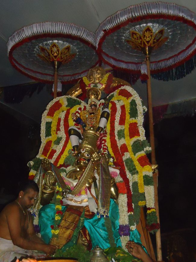 20, 21ST JAN 15 - THIRUNANGUR 11 GARUDASEVAI (444)
