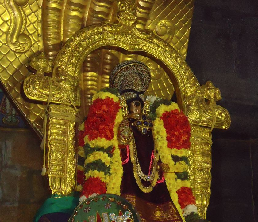 Sri Namperumal In sesha vahanam boopathi thirunal 2015