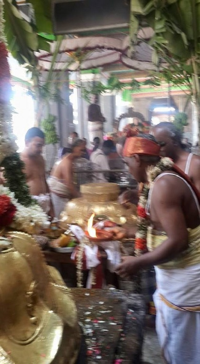 Thiruvinnagar Sri Oppilliappan Venkatachalapathi Temple Panguni Brahmotsavam Commences26