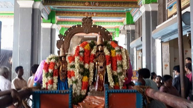 Thiruvinnagar Sri Oppilliappan Venkatachalapathi Temple Panguni Brahmotsavam Commences4