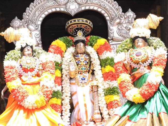 2nd may 15 - 11.30 to 12.30 - uthamar koil thiruther utsavam (18)