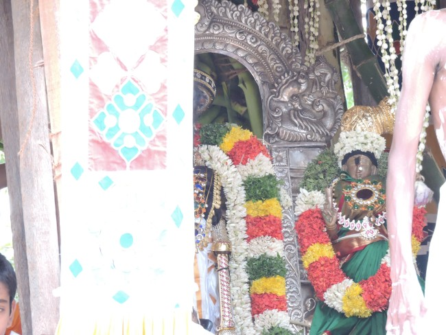 2nd may 15 - 11.30 to 12.30 - uthamar koil thiruther utsavam (31)