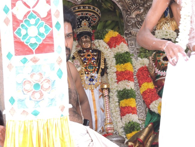 2nd may 15 - 11.30 to 12.30 - uthamar koil thiruther utsavam (34)