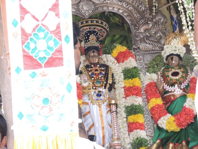 2nd may 15 - 11.30 to 12.30 - uthamar koil thiruther utsavam (35)