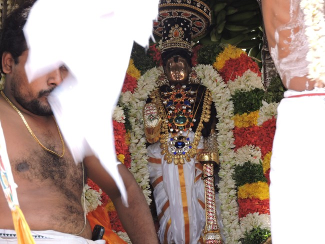 2nd may 15 - 11.30 to 12.30 - uthamar koil thiruther utsavam (37)