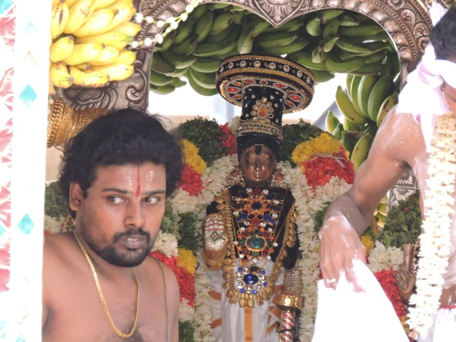 2nd may 15 - 11.30 to 12.30 - uthamar koil thiruther utsavam (60)
