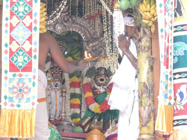 2nd may 15 - 11.30 to 12.30 - uthamar koil thiruther utsavam (67)