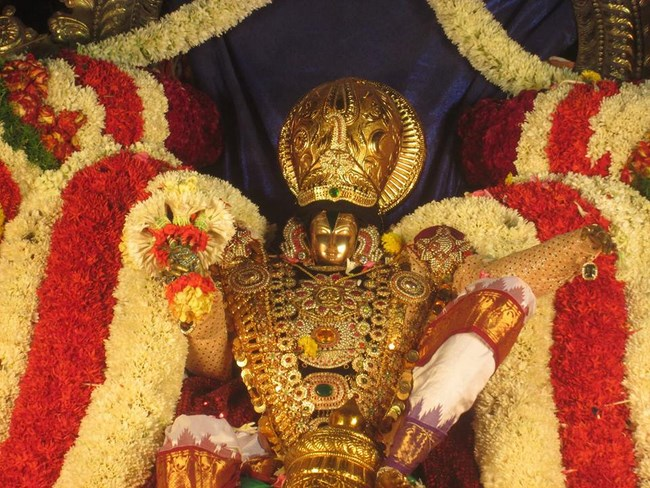 Pondicherry Sri Srinivasa Perumal Temple Brahmotsavam1