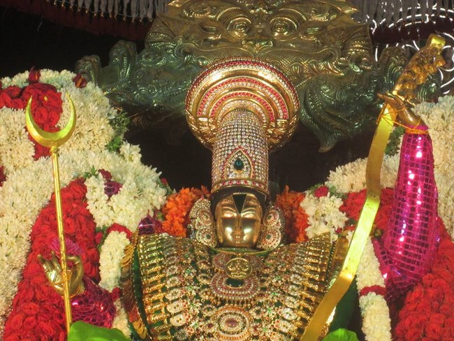 Pondicherry Sri Srinivasa Perumal Temple Brahmotsavam12