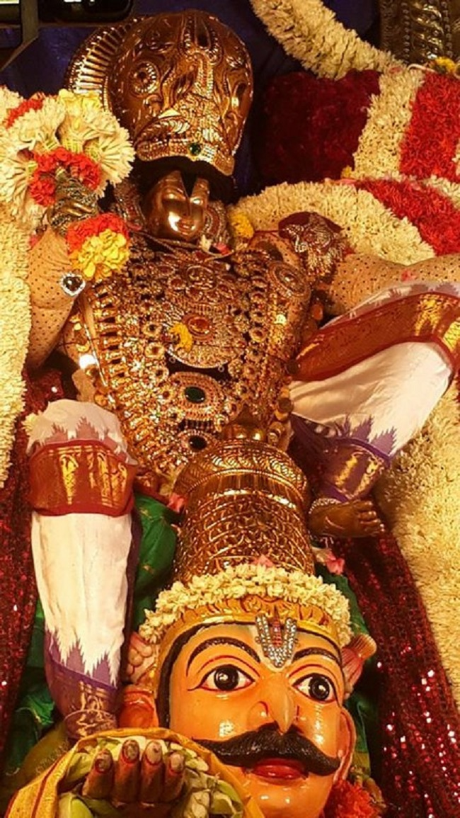 Pondicherry Sri Srinivasa Perumal Temple Brahmotsavam15