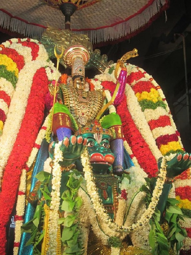 Pondicherry Sri Srinivasa Perumal Temple Brahmotsavam17