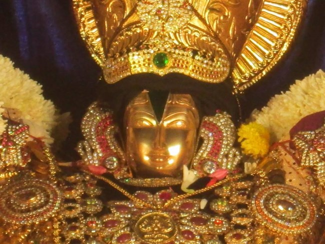 Pondicherry Sri Srinivasa Perumal Temple Brahmotsavam20