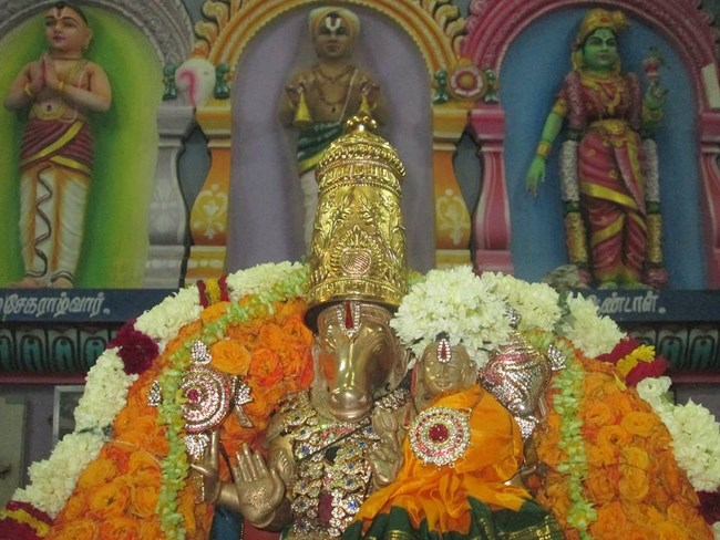 Pondicherry Sri Srinivasa Perumal Temple Brahmotsavam4