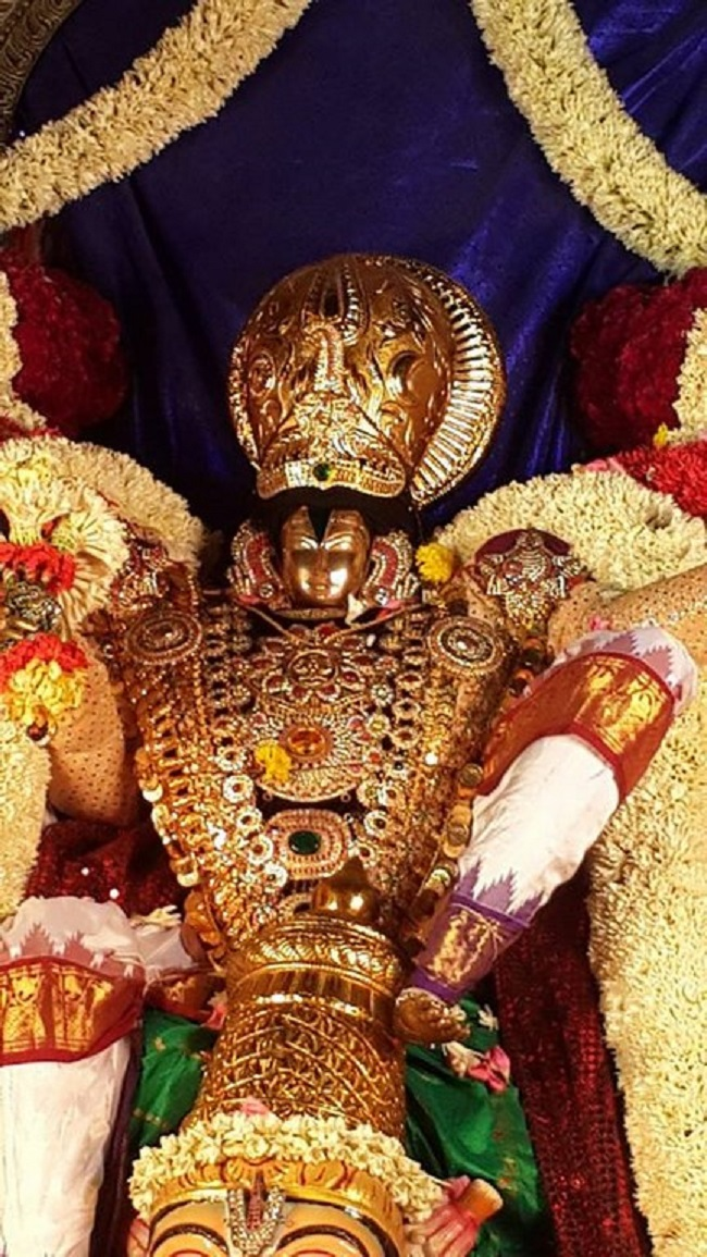 Pondicherry Sri Srinivasa Perumal Temple Brahmotsavam7