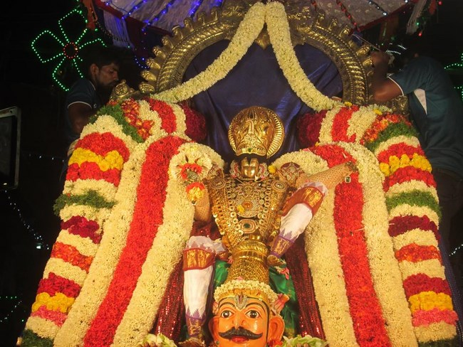 Pondicherry Sri Srinivasa Perumal Temple Brahmotsavam9