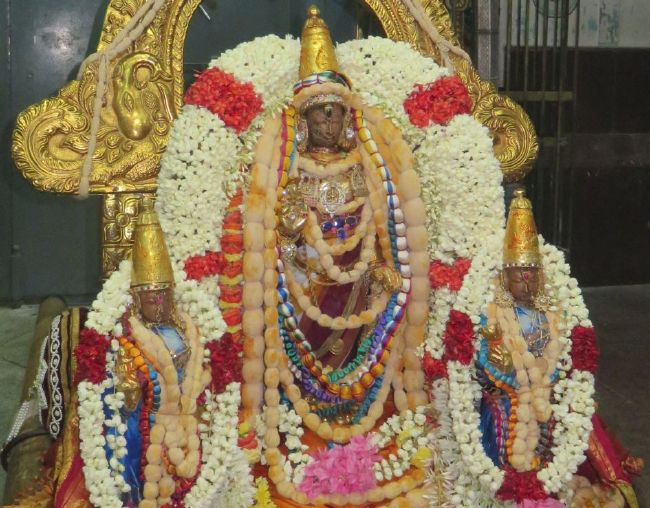 Kanchi Sri Devarajaswami Temple Pavithrotsavam day 6 -2015 01