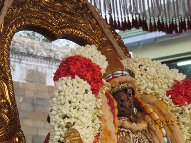 Kanchi Sri Devarajaswami Temple Pavithrotsavam day 6 -2015 12