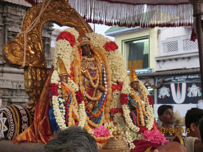 Kanchi Sri Devarajaswami Temple Pavithrotsavam day 6 -2015 13