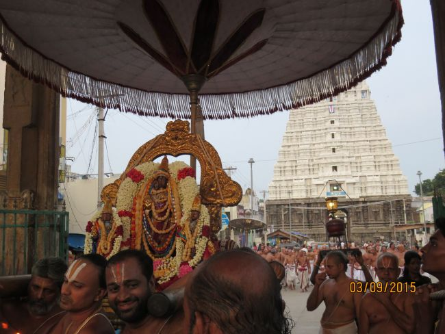 Kanchi Sri Devarajaswami Temple Pavithrotsavam day 6 -2015 17