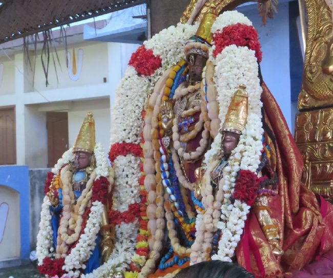 Kanchi Sri Devarajaswami Temple Pavithrotsavam day 6 -2015 20