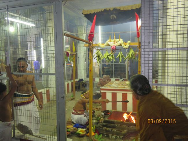 Kanchi Sri Devarajaswami Temple Pavithrotsavam day 6 -2015 31