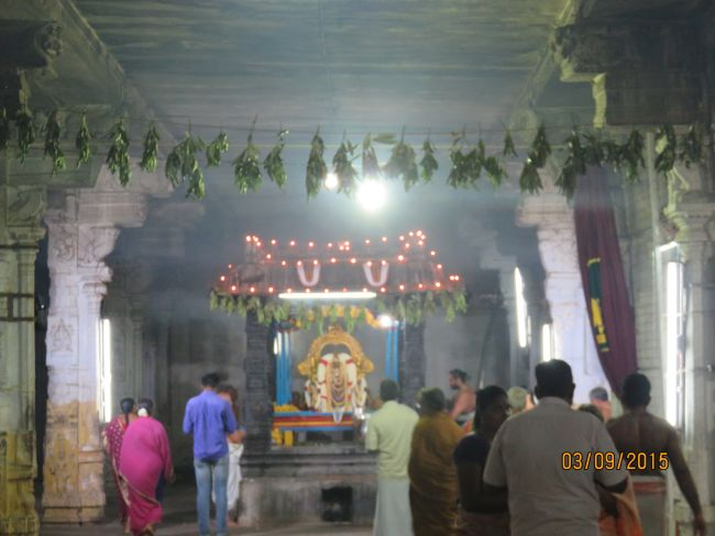 Kanchi Sri Devarajaswami Temple Pavithrotsavam day 6 -2015 32