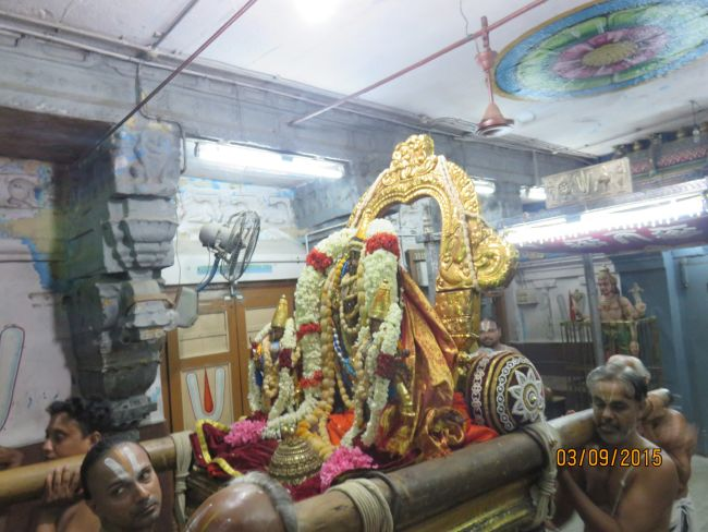 Kanchi Sri Devarajaswami Temple Pavithrotsavam day 6 -2015 35