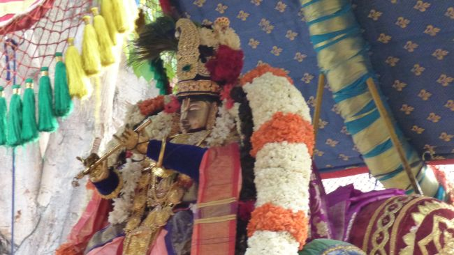 Thoopul  Swami desikan Thirunakshatra Utsavam day 6 Morning 2015 04