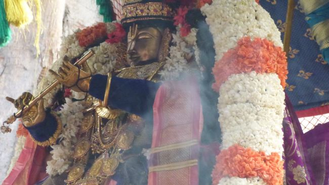 Thoopul  Swami desikan Thirunakshatra Utsavam day 6 Morning 2015 05
