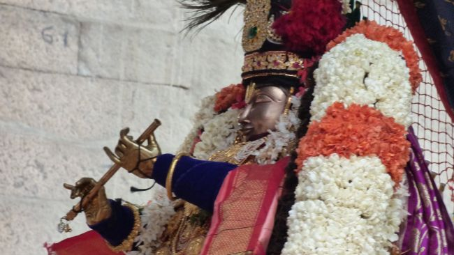 Thoopul  Swami desikan Thirunakshatra Utsavam day 6 Morning 2015 09