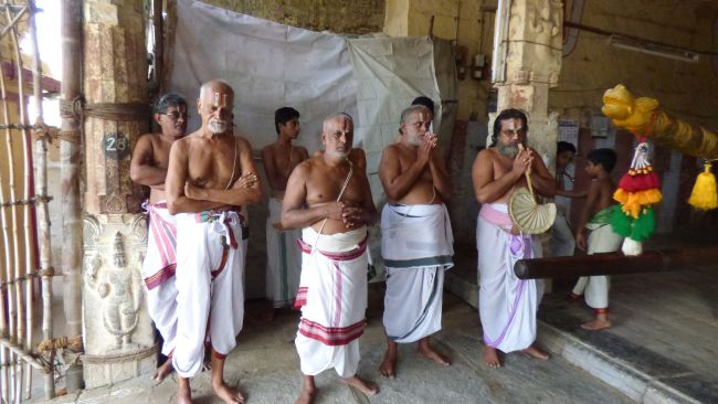 Thoopul  Swami desikan Thirunakshatra Utsavam day 6 Morning 2015 15
