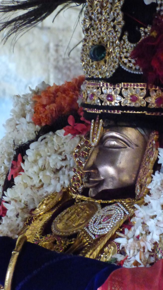 Thoopul  Swami desikan Thirunakshatra Utsavam day 6 Morning 2015 19