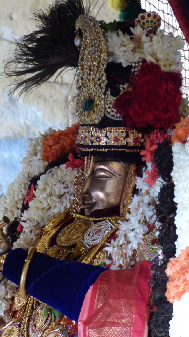 Thoopul  Swami desikan Thirunakshatra Utsavam day 6 Morning 2015 21