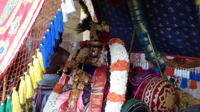 Thoopul  Swami desikan Thirunakshatra Utsavam day 6 Morning 2015 24