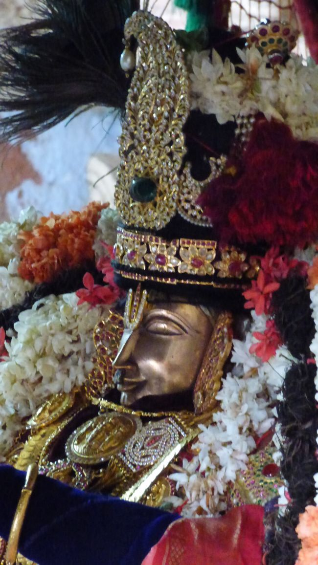 Thoopul  Swami desikan Thirunakshatra Utsavam day 6 Morning 2015 25