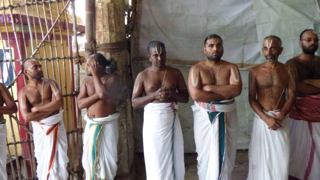 Thoopul  Swami desikan Thirunakshatra Utsavam day 6 Morning 2015 30