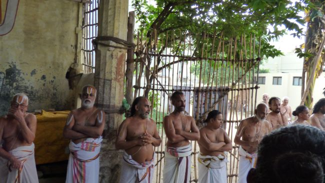 Thoopul  Swami desikan Thirunakshatra Utsavam day 6 Morning 2015 33