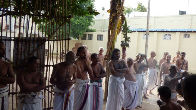 Thoopul  Swami desikan Thirunakshatra Utsavam day 6 Morning 2015 34